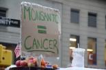 『モンサント=ガン』と手書きしたプラカード。経団連の米倉会長が見たら部下に命じて撤去させるだろうか。=ズコッティ公園。写真:筆者撮影=