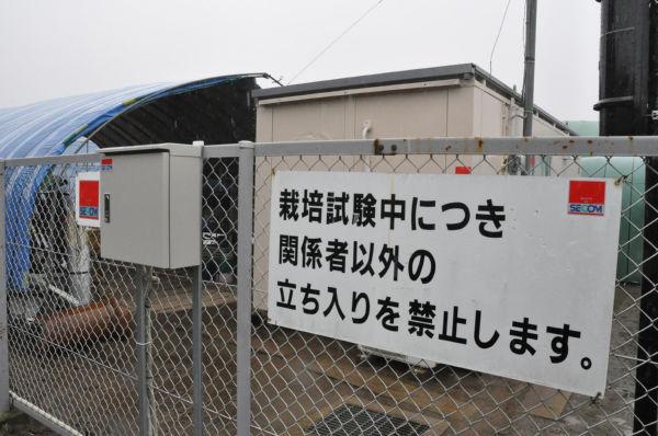 SECOMの監視装置が目を光らせるなか『立ち入り禁止』の看板があたりを睥睨する。=17日、茨城県河内町。写真:筆者撮影=