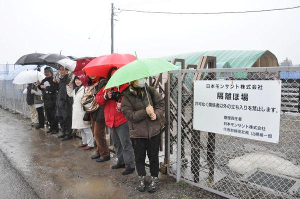 大雨のため参加者はわずか7人だが、「モンサント隔離ほ場」の入り口をオキュパイした。=写真:筆者撮影=