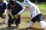 「こうやって、指2本で植えるんだよ」。慣れた手つきの妻は生徒たちに教えた。=17日、大鷲里山ファームビレッジ(千葉県君津市)。写真:諏訪京撮影=